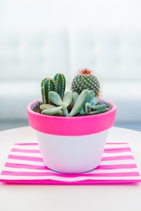 HOT-PINK-POT-DIY