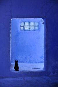 azul9